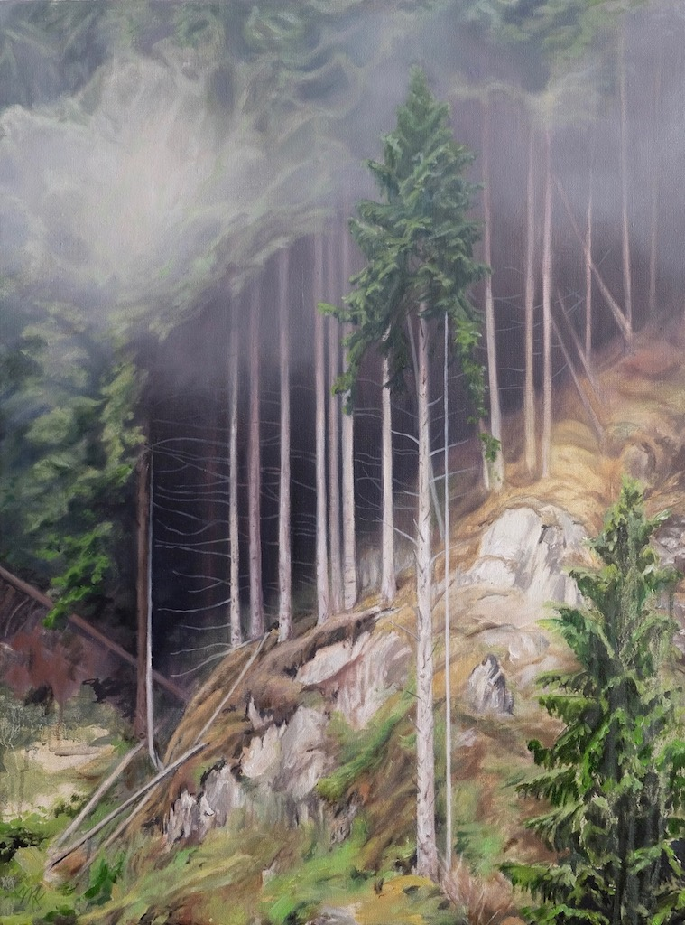 'After the Rain'. Een herinnering aan Noorwegen. Olieverf op linnen. Geschilderd door Mirjam Kleywegt